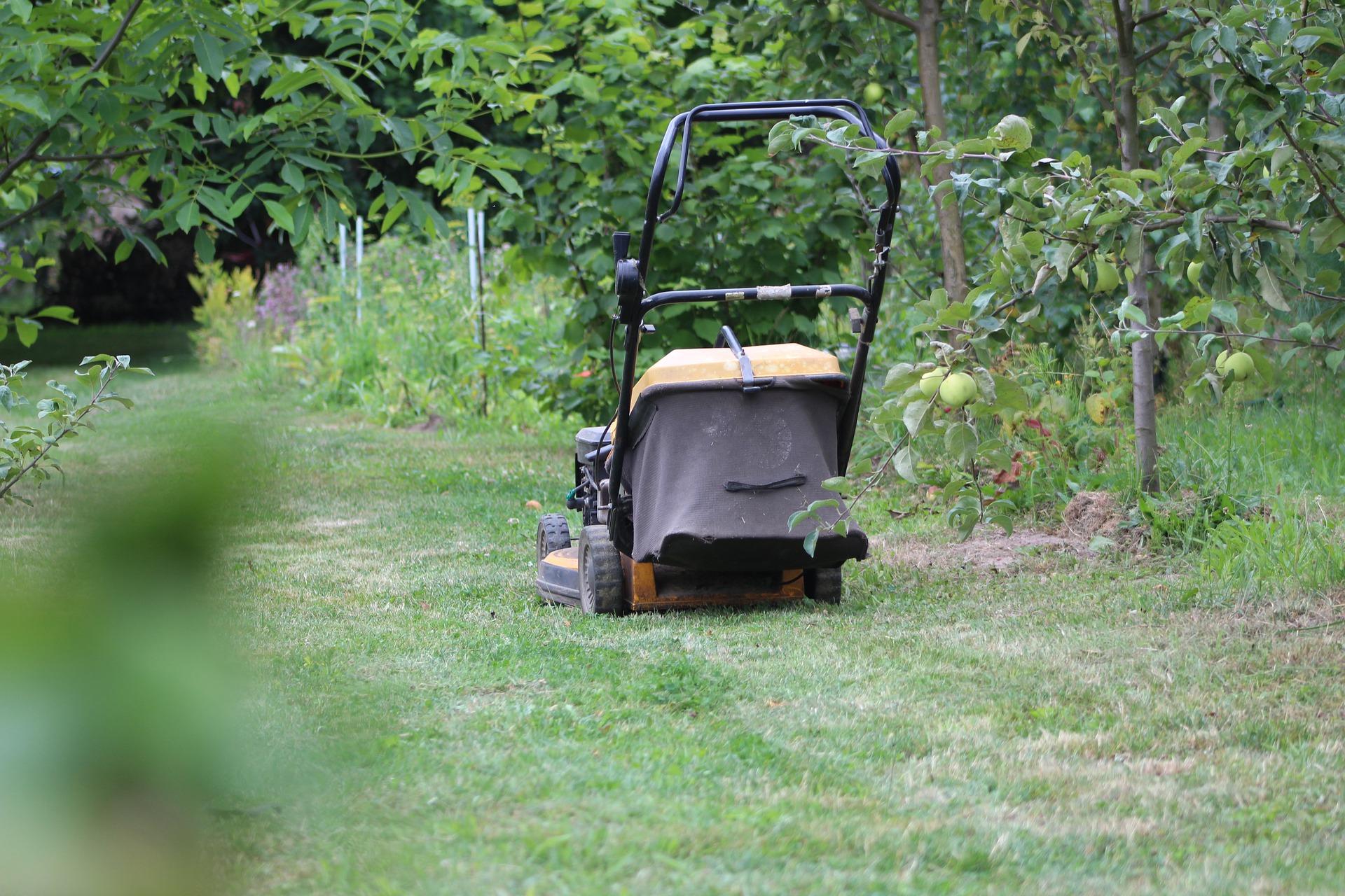 Gardener lawn mowing