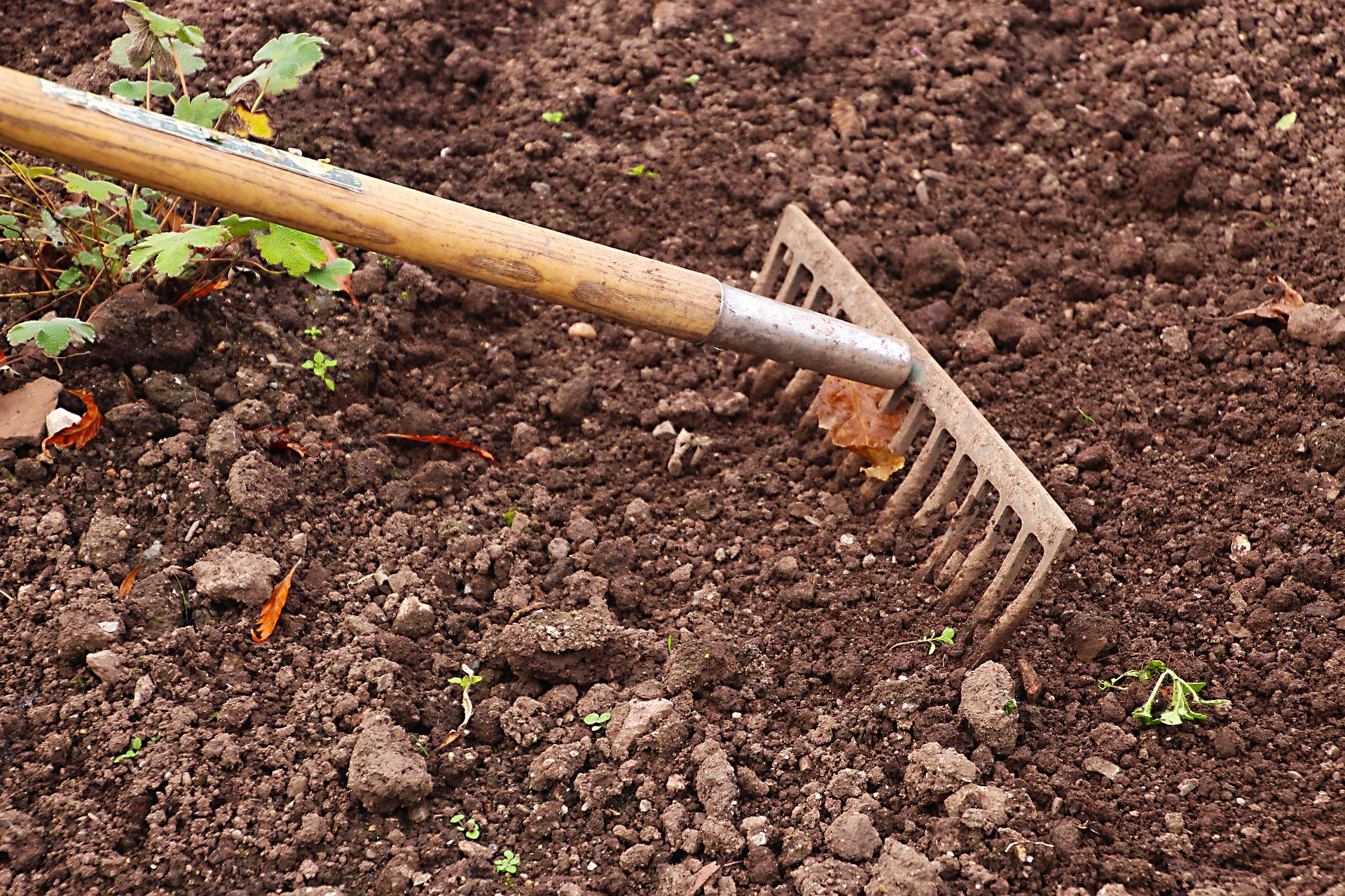 Gardening raking and weeding